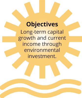 New Alternatives Fund Objectives